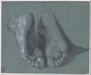 293px-Albrecht_Duerer_-_Study_of_Two_Feet_-_Google_Art_Project